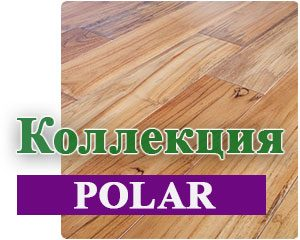 Коллекция Polar