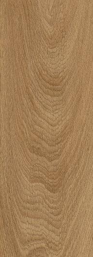 Laurel Oak 51822
